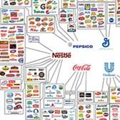 Nghị định 43/2017/NĐ-CP về nhãn hàng hóa
