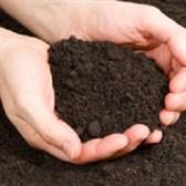 Nợ tiền sử dụng đất quá hạn, xử lý ra sao?