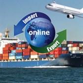 Mẫu báo cáo tình hình thực hiện nhập khẩu