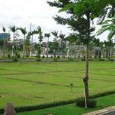 Đơn đề nghị về việc thu hồi giấy chứng nhận quyền sử dụng đất