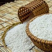 Đơn xin cấp giấy chứng nhận đủ điều kiện xuất khẩu gạo