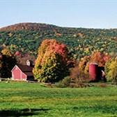 Thông tư 02/2020/TT-BNNPTNT quy định tiêu chí kinh tế trang trại