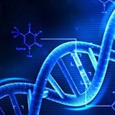 Thông tư 10/2020/TT-BTNMT báo cáo tiếp cận nguồn gen