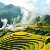 Top 7 mẫu Phân tích Việt Bắc hay nhất chọn lọc