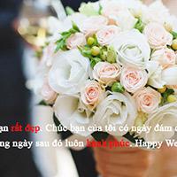 Lời chúc mừng đám cưới hay và ý nghĩa