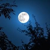 Top 9 mẫu phân tích bài thơ Ánh trăng siêu hay