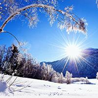 Lời chúc mùa đông ấm áp