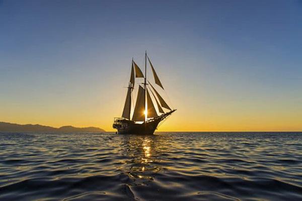 Phân tích Chiếc thuyền ngoài xa