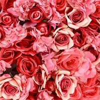 Hoa hồng - Tên gọi các loại hoa hồng và ý nghĩa