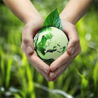 Thế nào là bảo vệ môi trường?