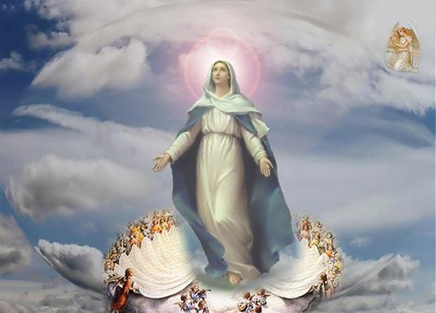 hình ảnh Đức Mẹ hồn xác lên trời