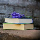 Văn mẫu Văn học là tình thương - Bài viết số 7 lớp 8 đề 2