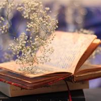 Những ngày thơ ấu của Nguyên Hồng được viết theo thể loại nào?